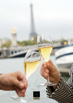Champagne : from terroir to wine