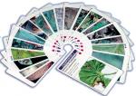 Croq' feuilles : 2 jeux en 1 pour découvrir les ennemis de culture et les auxiliaires de lutte biologique