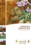 Culture de la pomme de terre de conservation