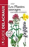Les plantes sauvages : comestibles et toxiques
