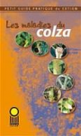 Les maladies du colza