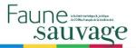 Gestion du faisan commun : enseignements de 30 ans de suivi en milieu insulaire